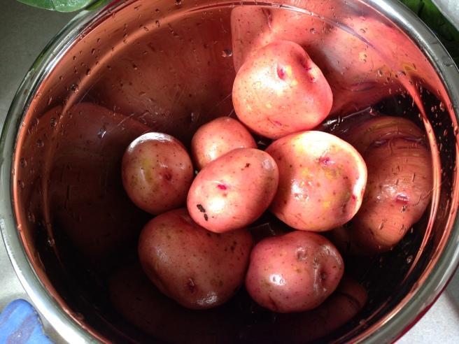 newpotatoes