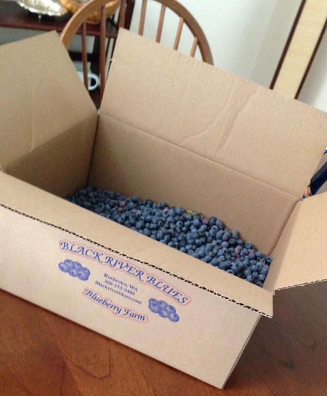 blueberrybox
