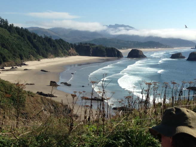 The view from a picnic table site at Ecola State Park.